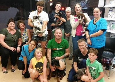 Hilton vet hospital puppy classes