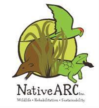 logo-Native-Arc
